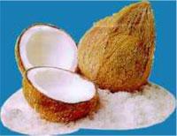 mesin pemarut kelapa 1 agrowindo