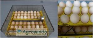 Mesin Penetas Telur 96 Butir Otomatis - AGR-YZ96 2 agrowindo