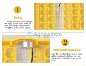 Mesin Penetas Telur Otomatis 48 Butir - AGR-YZ48 9 agrowindo