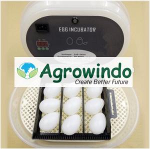 Mesin Tetas Telur 12 Butir Otomatis - AGR-JN12 5 agrowindo