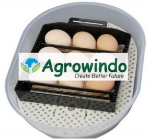 Mesin Tetas Telur 12 Butir Otomatis - AGR-JN12 6 agrowindo