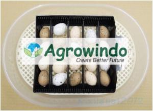 Mesin Tetas Telur 12 Butir Otomatis - AGR-JN12 7 agrowindo