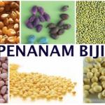 Alat Penamam Biji Tanaman (jagung, Kedelai, Kacang, dll)