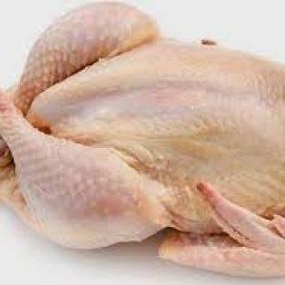 Peluang Usaha Ayam Potong Dan Analisa Usahanya Agrowindo
